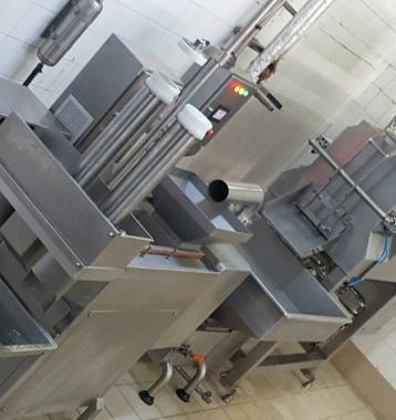 Linea de fabricacion de queso Oaxaca Natural y analogo